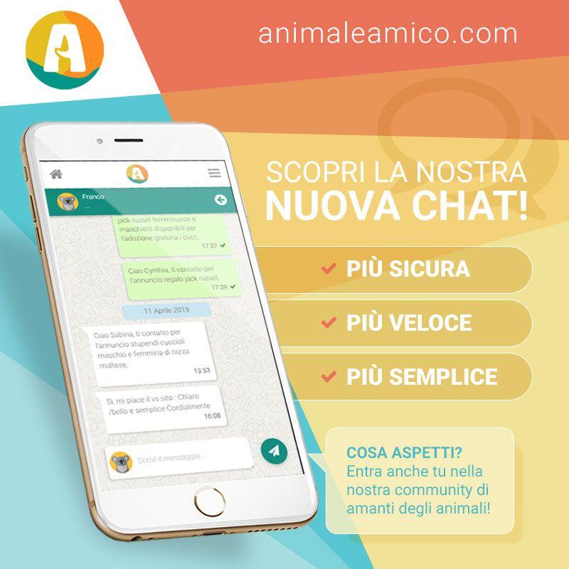 AnimaleAmico.com | Nuova Chat 2019